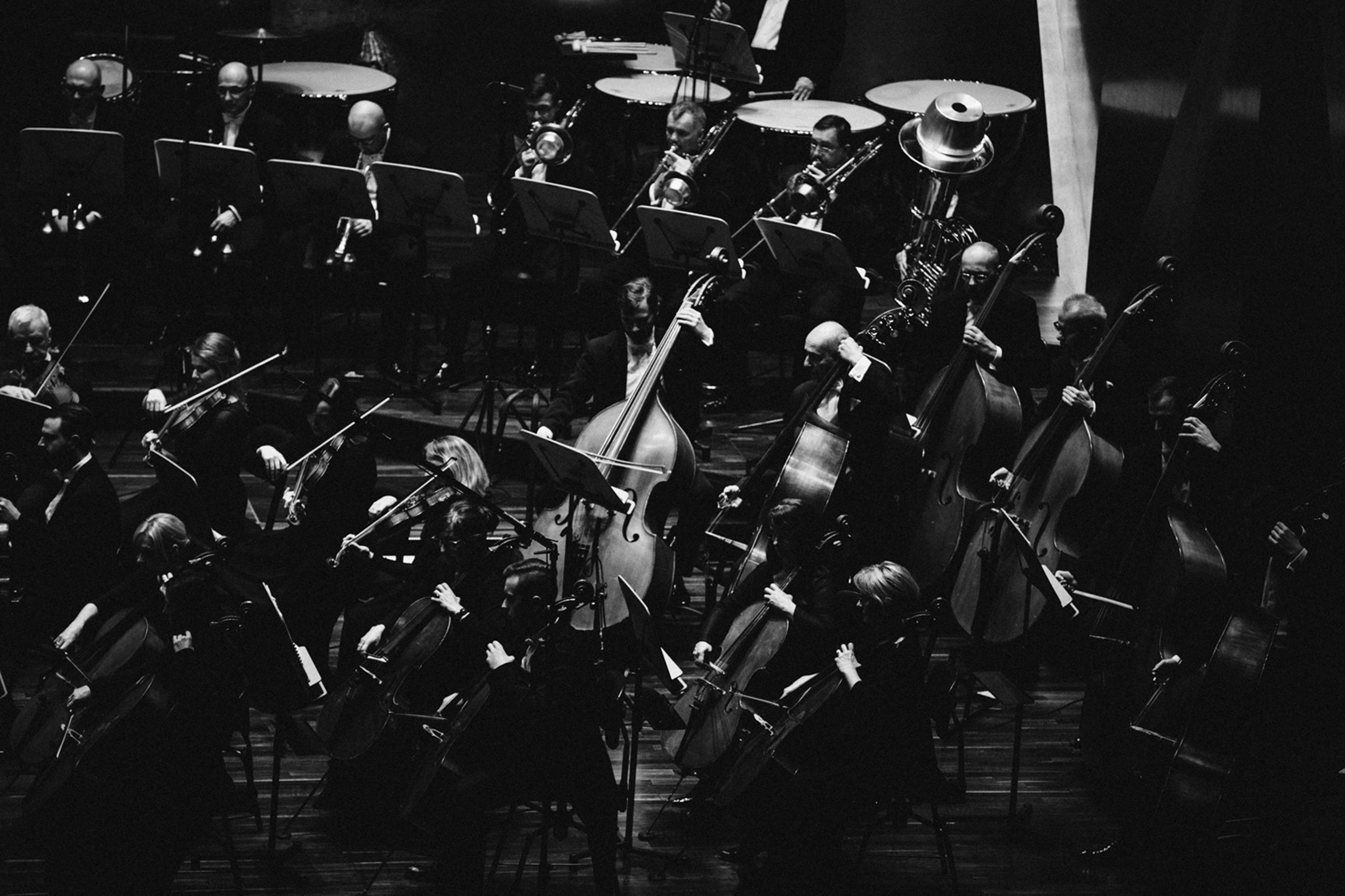 Filharmonia im. M Karłowicza w Szczecinie Fot. Kinga Karpati&Daniel Zarewicz PRESTIGE PORTRAIT