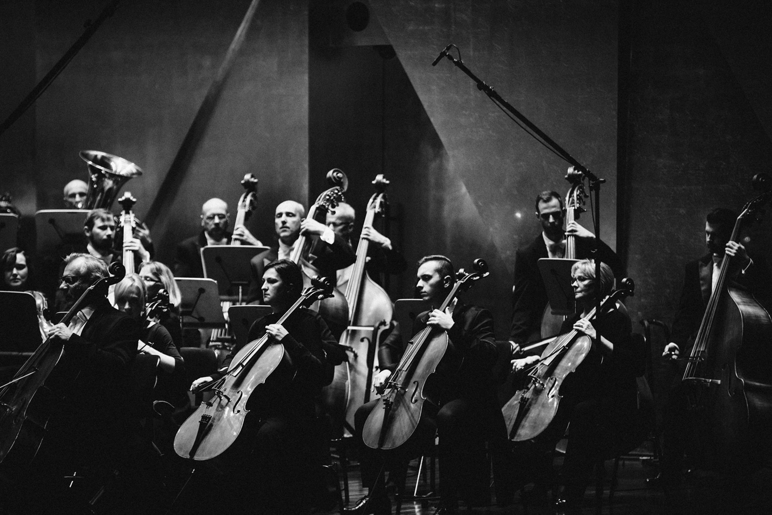 Orkiestra Filharmonii w Szczecinie Fot. Kinga Karpati&Daniel Zarewicz PRESTIGE PORTRAIT